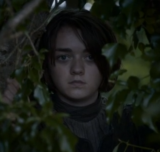 Game of Thrones: Riverlands (Arya Stark, The Hound and the ...